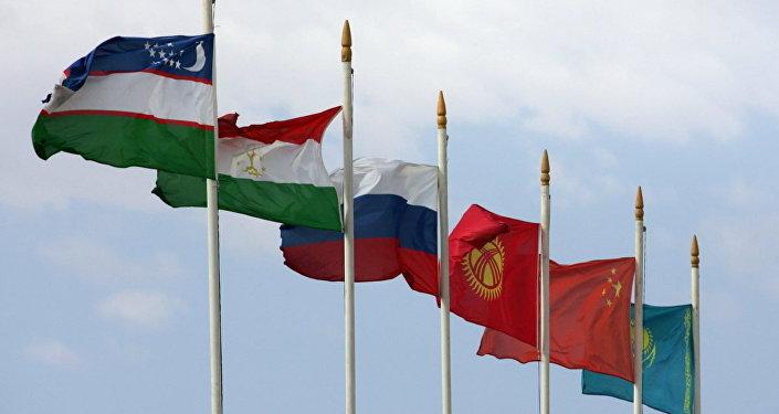 Флаги государств-участников Шанхайской организации сотрудничества. Архивное фото