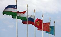 Флаги стран участников Шанхайской организации сотрудничества. Архивное фото