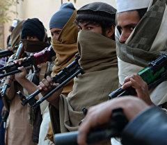 Талибан радикалдык кыймылынын согушкерлери. Архив