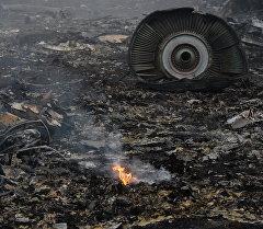 На месте крушения малайзийского самолета Boeing 777. Архивное фото