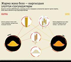 Жарма жана бозо — кыргыздын улуттук суусундуктары