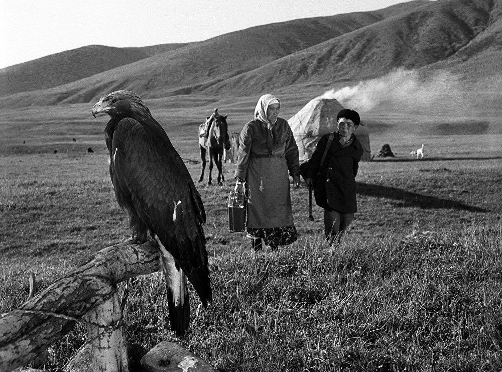 Бүркүт — Бакай карынын сырдашы