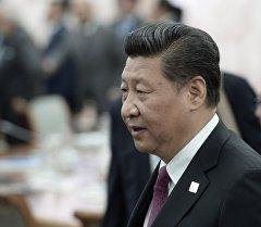 Кытайдын төрагасы Си Цзиньпин. Архив