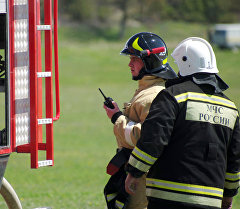 Сотрудники МЧС РФ во время учений по ликвидации лесных пожаров под Севастополем. Архивное фото
