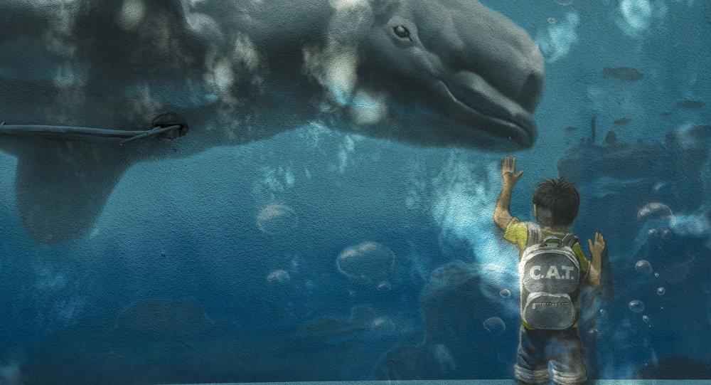 Чүй проспекти менен Логвиненко көчөлөрүнүн кесилишиндеги үйдө тартылган белуха китинин сүрөтү
