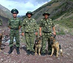 Кыргыз Республикасынын чек ара кызматкерлери иттер менен.