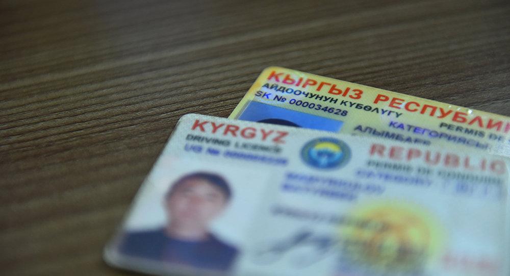 Жители Киргизии смогут работать вРФ по общенациональным водительским удостоверениям