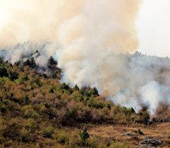 Пожар в ущелье Чычкан. Архивное фото