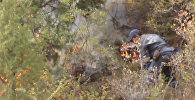 Тушение пожара в ущелье Чычкан — кадры с места событий