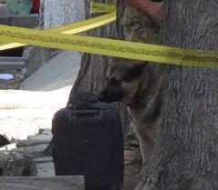Бишкектеги бомбаны зыянсыздандыруу. Окуя болгон жерден кадрлар