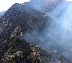 Ущелье Чычкан после пожара. Архивное фото
