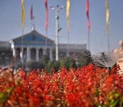 Полив цветов у здания мерии Бишкека. Архивное фото