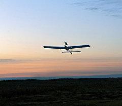 Российский беспилотный летательный аппарат. Архивное фото