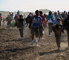Өз өлкөсүндөгү согуштан качкан мигранттар Венгриядагы атайы лагерьге чуркоодо.