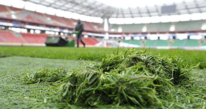 Скошенная трава на футбольном поле. Архивное фото