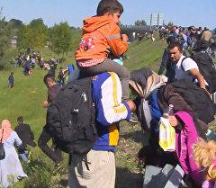 Мигранты из пункта приема в Реске бежали от полицейских и кричали Нет лагерю!