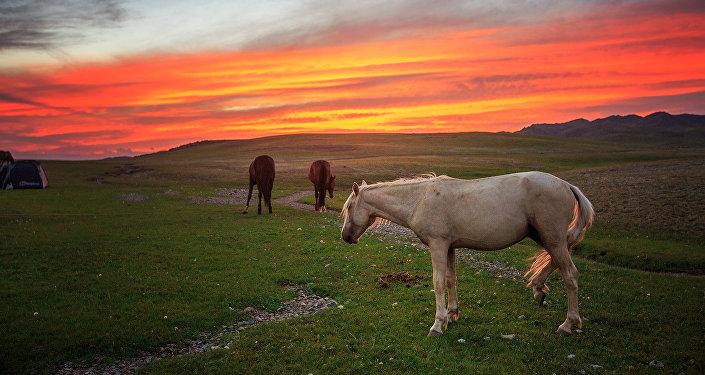 Закат в горах Ала-Тоо. Архивное фото