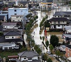Этау куюнунан Японияны суу каптаган аймактары.