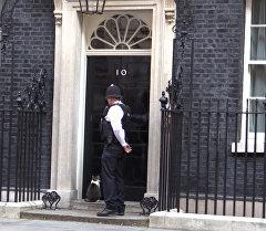 Впустили и подтолкнули, или Как нерешительный кот Кэмерона попал в резиденцию