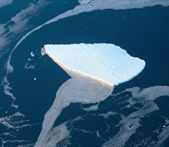 Антарктиданын жеегиндеги айсберг. Архив