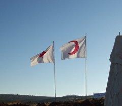 Эмблема фонда Красного Полумесяца и Красного креста. Архивное фото