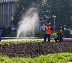Сотрудники муниципального предприятия Зеленстрой во время полива газона в городе Бишкек. Архивное фото