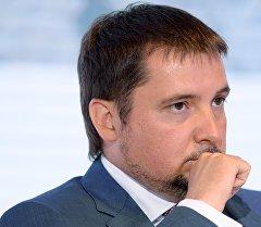 Заместитель Министра экономического развития Российской Федерации Александр Цыбульский. Архивное фото