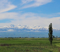 Бишкек шаарынан тоолорго көрүнүш. Архив