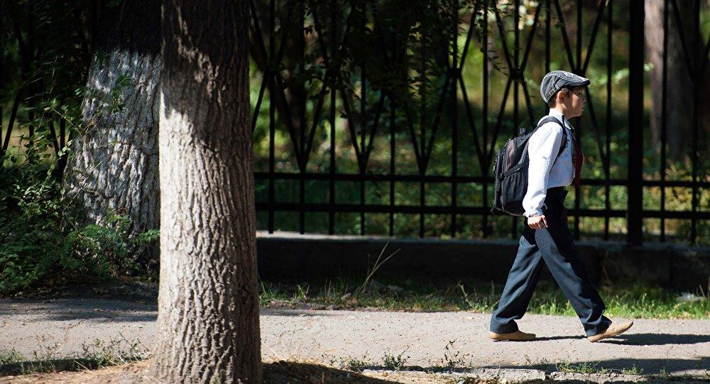 Школьник столичной школы идет по улице. Архивное фото