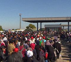 Беженцы выстроились в многометровую очередь перед временным лагерем  Хорватии