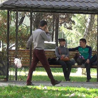 Эксперимент Мусор мимо урны вызвал негативные эмоции бишкекчан