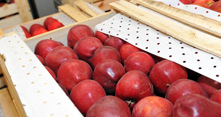 Ящики с яблоками. Архивное фото