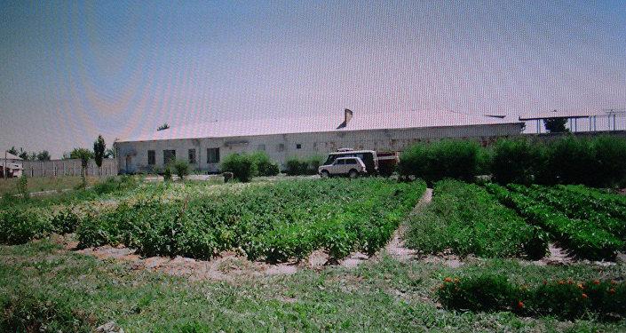Здание, где содержатся заключенные (2008 год)