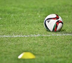 Футбольный мяч на поле. Архивное фото