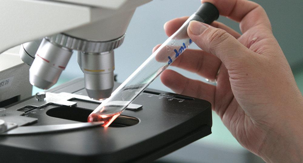 Микроскоп. Архивное фото