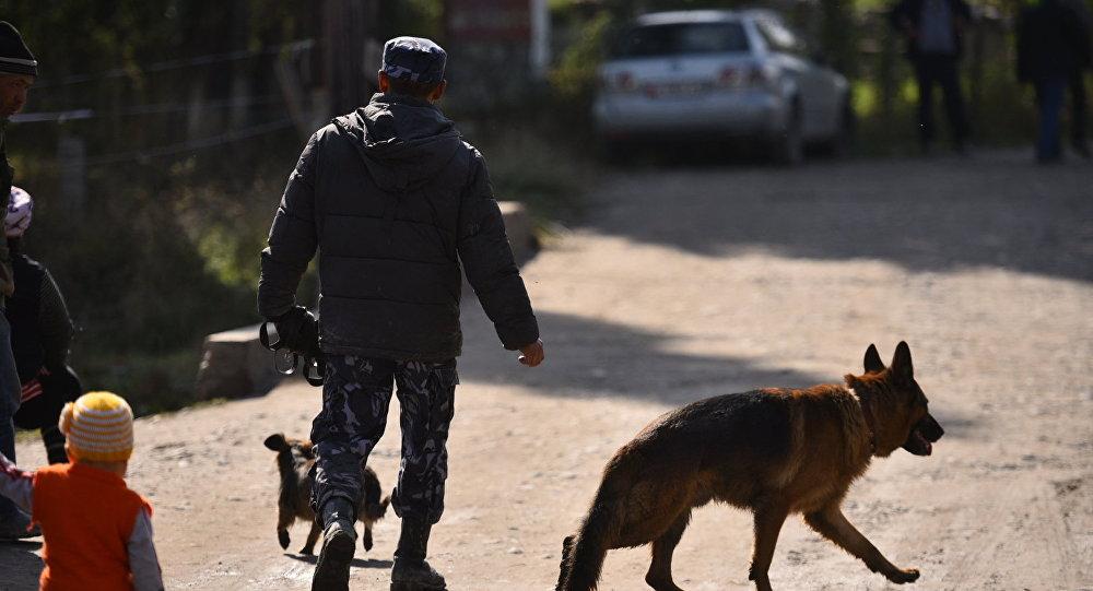 Сотрудник МВД с собакой. Архивное фото
