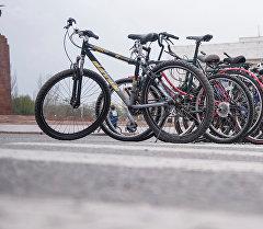Пункт проката велосипедов. Архивное фото