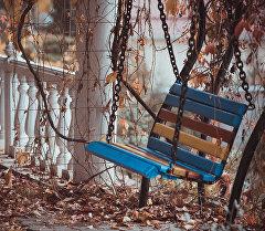 В столице еще тепло и глубокую осень можно определить по пожелтевшим листьям