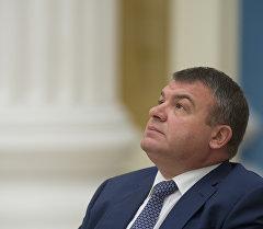 Министр обороны РФ Анатолий Сердюков. Архивное фото