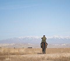Житель села на лошади. Архивное фото