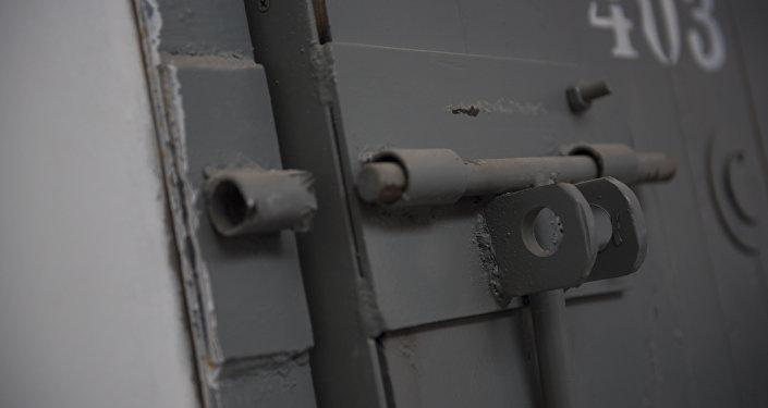 Замок железной двери. Архивное фото