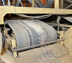 Предприятие по переработке фасоли в Таласе. Архивное фото