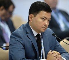 ЕЭК министри Данил Ибраев. Архив