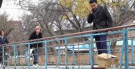 Жигит күчүктү сууга ыргытканы жатат — Бишкекте өткөн соцэксперимент