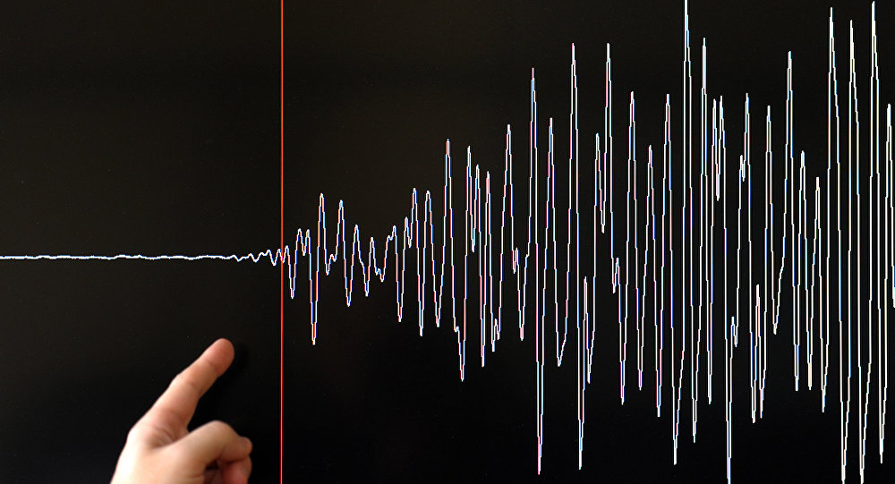 Мужчина показывает на график по толчкам землетрясения. Архивное фото