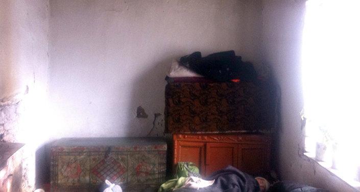 Жер титирөөнүн Арпа-Тектир айылындагы кесепети.