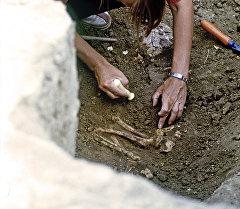 Археологтор. Архивдик сүрөт