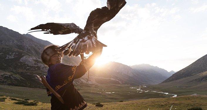 Бүркүтчүлүк кыргыздардын кылымдардан бери атадан балага мурас болуп калтырылып келген өнөр