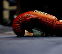 Бокс перчаткасы. Архив