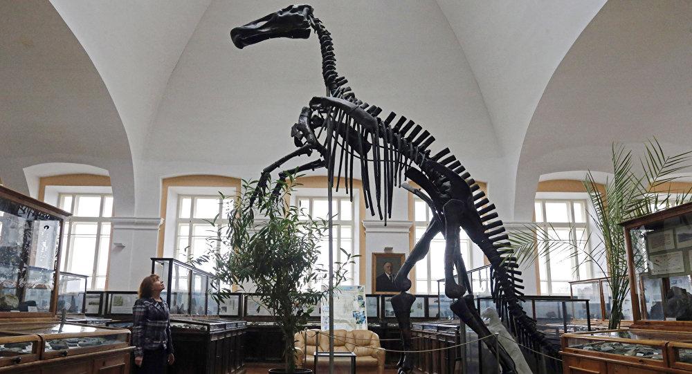Динозавдын музейдеги сөөгү, архивдик сүрөт